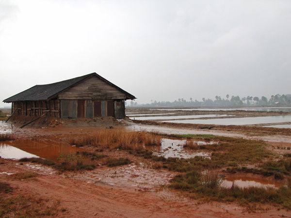 Salt fields - Kampot, Cambodia