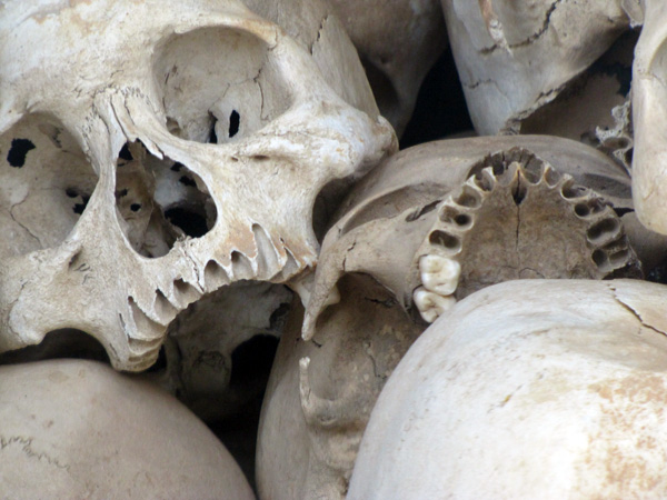 Skulls - Killing Fields, Phnom Penh