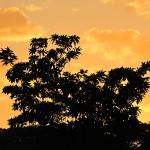 Sunset - Manzanillo, Costa Rica