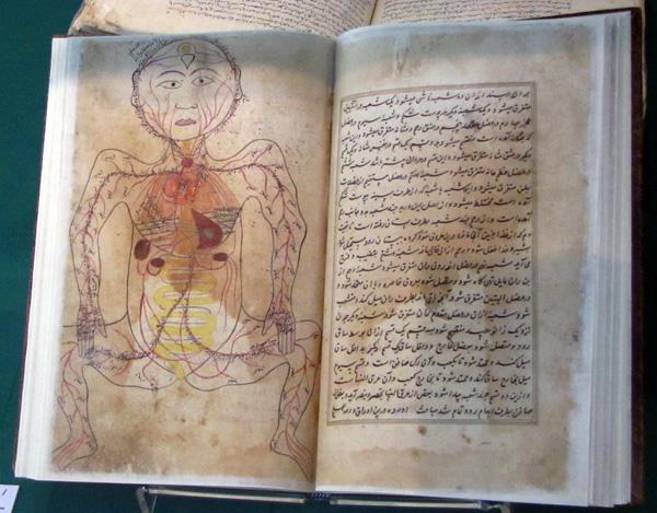 Tashrih Al-Badan (Anatomy of the Body), Iran, 17th century CE - Islamic Arts Museum, Kuala Lumpur, Malaysia