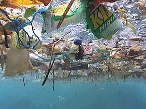 Pacific Ocean garbage