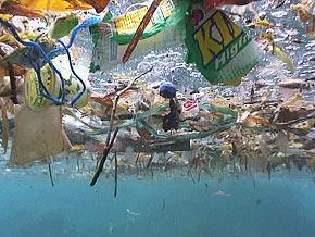 Pacific Ocean garbage