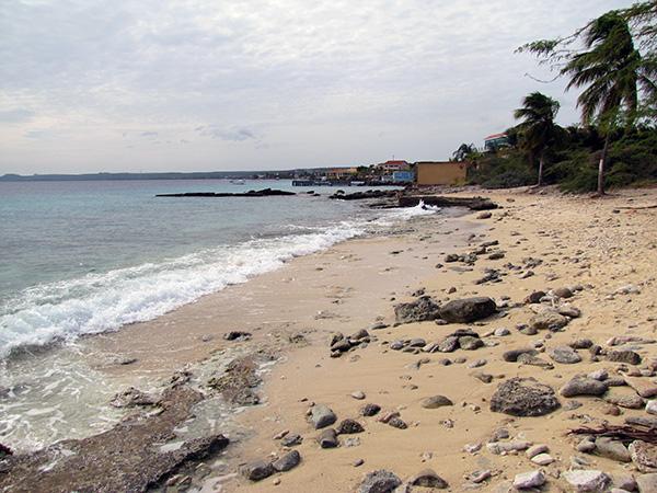 Bonaire shore