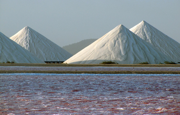 Salt - Bonaire