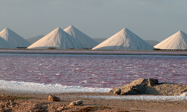 Salt mounds and pink water - Bonaire
