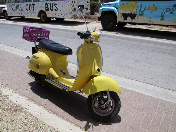 Rented Scooter - Bonaire